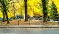 Quiet Autumn park scene after police evict Occupy Portland