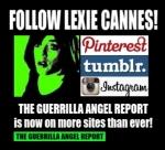 nnes guerrilla angel report