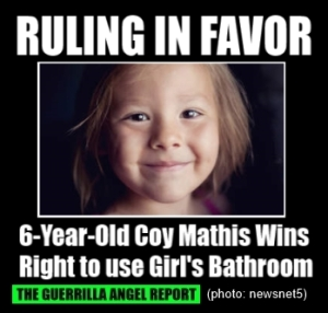 School S Barring Of Trans Child From Girls Bathroom Ruled Discriminatory Lexie Cannes State