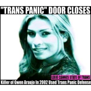 Araujo Gwen trans panic defense