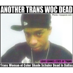 shade schuler trans dallas