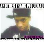 shade schuler trans dallas
